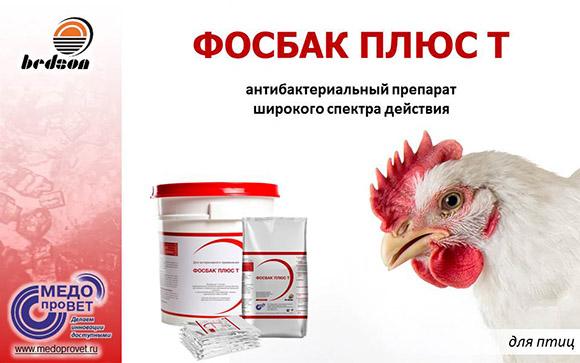 Презентация Фосбак Плюс Т (птицы) 16.05