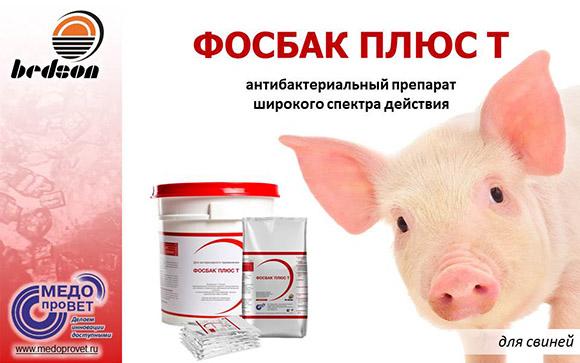 Презентация Фосбак Плюс Т (свиньи) новая 15.05.2017